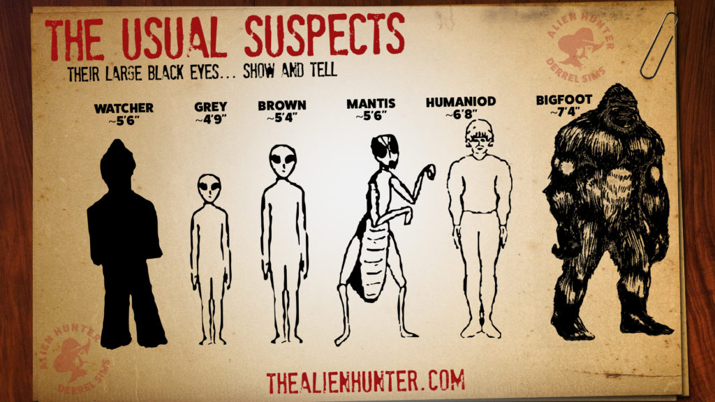 The Usual Suspects. Most commonly reported types. (The Alien Hunter)